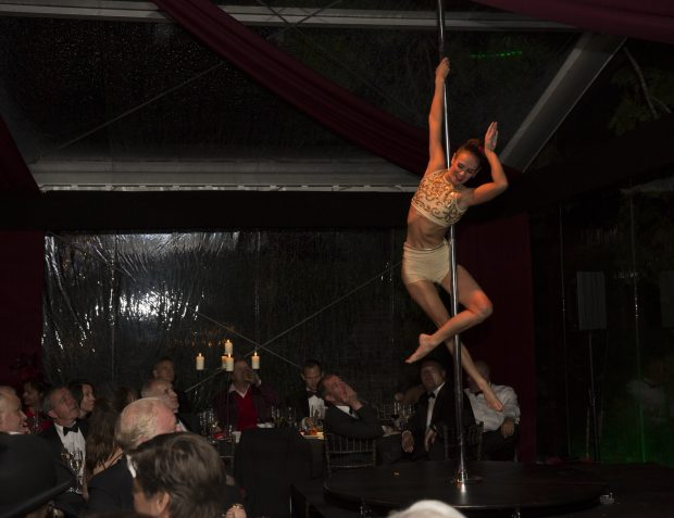 Pole Dancer At Burlesque Themes Party