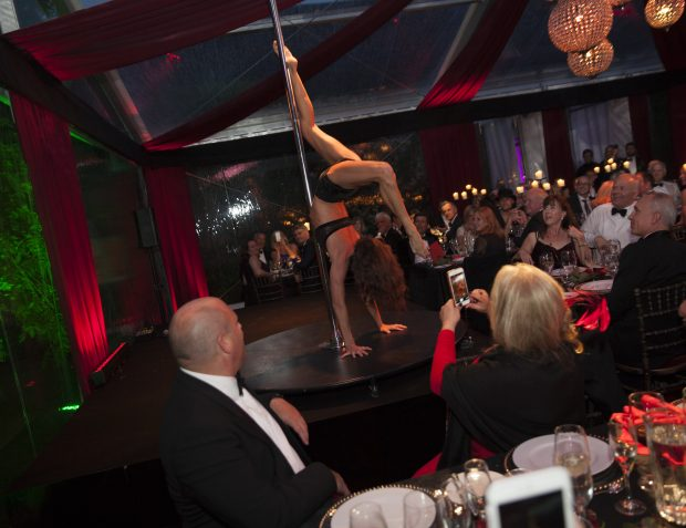 Pole Dancer At Burlesque Themed Party