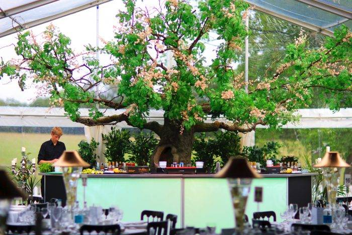 Tree over bar in marquee venue