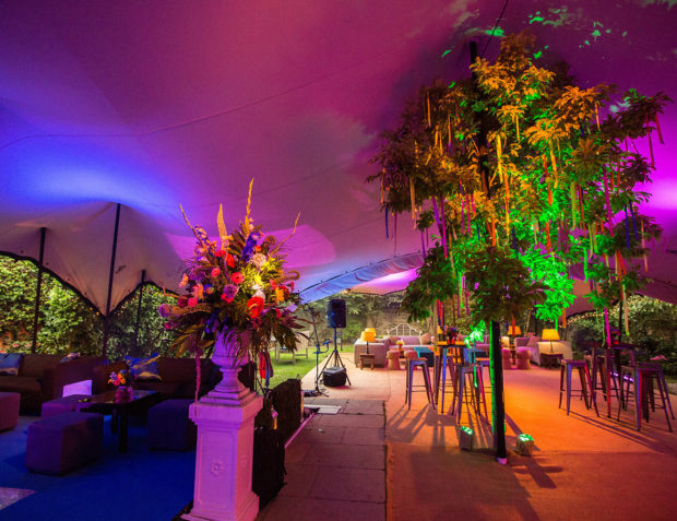 Colourful ribbons on a tree, floristry and lighting inside stretch tent