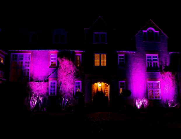 Purple uplights outside clients house